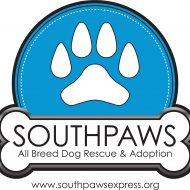 southpawsexpress.org
